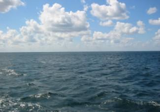 «Ценопад». Жители Пензы станут «на каплю ближе» к Черному морю