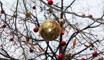 Стало известно, где большинство пензенцев проведет новогодний корпоратив