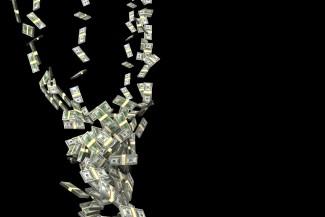 Мошенники вытянули из пензенца сотни долларов за вымышленного попугая
