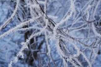 Завтра пензенцам пообещали «лютые» морозы