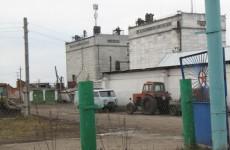 Саратовские налоговики «порадовали» владельцев Саловского элеватора, «сбежавших» из Пензы