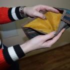 Продажа «Комбината детского питания» пермскому «мажору» принесла Заречному 14,5 млн. убытков