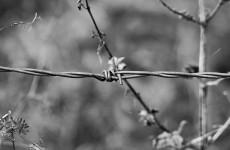В региональном УФСИН прокомментировали «выходку» заключенных, пытавшихся покончить с собой