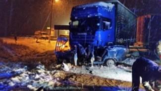 В жутком ДТП под Пензой с участием фуры скончались два человека