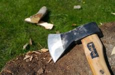 В Пензе бизнесмен незаконно нарубил деревьев почти на миллион и получил год условно