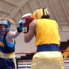 Пензенские боксеры показали себя в Анапе