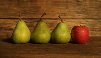 В Пензе уничтожено 276 килограммов нелегальных овощей и фруктов