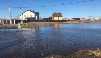 Испытано на себе: адский потоп в Мичурино