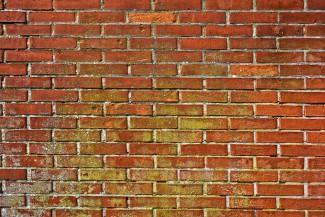 Кузнечанин продемонстрировал навыки проходить «сквозь» стены