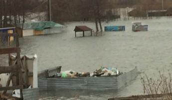 Жительница Пензы рассказала, чем грозит затопление Русеевского пляжа…