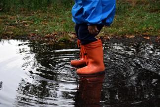 В Пензу идут проливные дожди и резкое похолодание