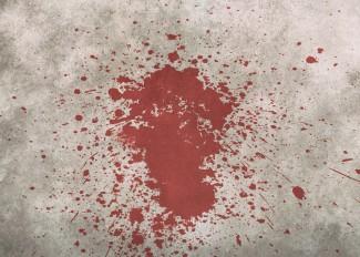 Под Пензой освирепевший мужчина забил подругу черенком от лопаты