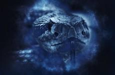Ядовитая змея едва не отправила на «тот свет» жительницу Пензенской области