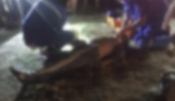 Пензенцы сообщили о смерти прохожего в районе ГПЗ