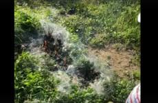 Акт сожжения браконьерских сетей рыбак из Пензы снял на видео