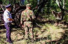 На кладбище в Чемодановке нашли военный снаряд