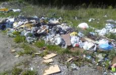 В Пензенской области пройдет Всемирный день чистоты