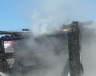 C пожаром в Бессоновском районе боролись 5 спасателей