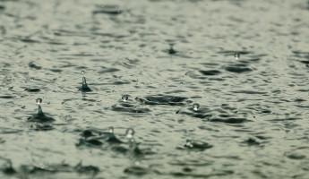 Завтра Пензенскую область затянет туманом и зальет дождями