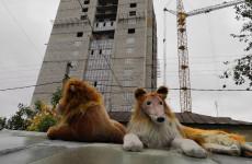 Чудеса строительного бизнеса. Жителям нового пензенского ЖК предлагают парковаться у соседей