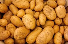 В Пензенскую область завезли зараженный картофель
