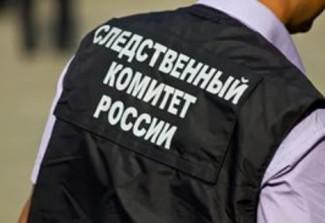 Следователи прокомментировали обнаружение тела несовершеннолетней жительницы Пензенской области