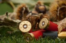 СК: Под Пензой в сторону супругов с детьми выстрелили из карабина