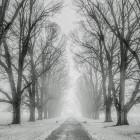 Осторожнее на дорогах: завтра в Пензенской области ожидается гололедица