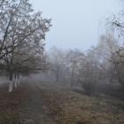 Завтра в Пензенской области снова ожидается гололедица
