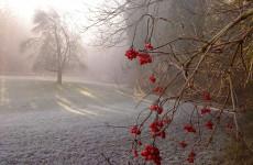 Завтра в Пензенской области похолодает до - 17 градусов