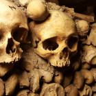 Когда скелеты не только в шкафу: во время замены труб рабочие нашли останки четырех человек