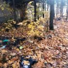 В Пензенской области найдена огромная незаконная свалка