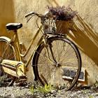 Безработная пензячка продала за 300 рублей чужой велосипед