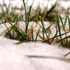 Какая погода ожидает пензенцев 28 ноября?