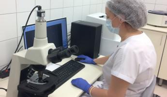 Уже со следующего года в Пензенском областном перинатальном центре станет доступна процедура ЭКО