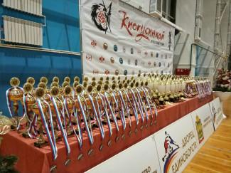 В Пензе завершился масштабный межрегиональный турнир по киокусинкай