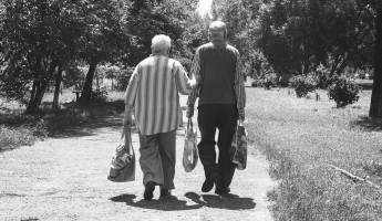 Продолжаем вставать с колен. В Нижнем Ломове пенсионеров задержали за кражу продуктов