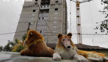 Собаки на сене. Как пензенские застройщики забыли о своей ответственности
