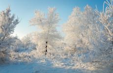 Завтра в Пензе и области столбик термометра опустится до минус 26 градусов