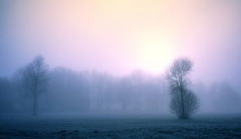 Завтра в Пензенской области ожидаются туман и гололедица