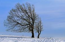 Завтра в Пензенской области ожидаются плюсовая температура и сильный ветер