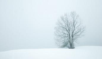 Завтра в Пензе и области столбик термометра упадет до минус 27 градусов