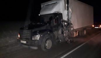 На трассе под Пензой легковушка столкнулась с грузовиком, погибли два человека