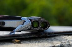 Ночью в Каменке нашли машину с огнестрельным оружием