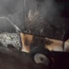 В Пензенской области ночью дотла сгорел автомобиль