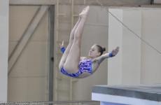 Пензенские спортсмены примут участие в «Кубке России» по прыжкам в воду