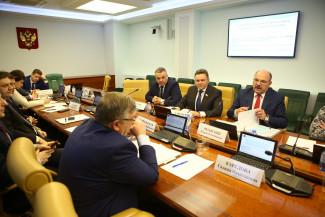 В Совете Федерации поддержали проект поликлиники в Спутнике