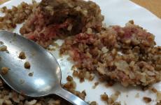 Сырые котлеты и недоваренная гречка: пензенцы показывают школьную еду