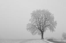 Осторожнее на дорогах: завтра в Пензенской области ожидаются туман и гололед