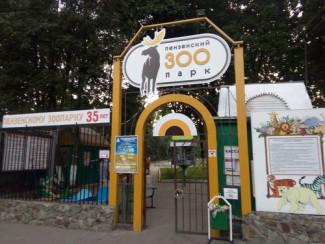 За прошедшие выходные пензенский зоопарк посетили 37 тысяч человек